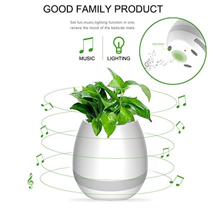 music flower pot  plant pot